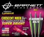 "Burt Coyote Barnett 22"" Bolts With Luminok Nocks (3 Pack)"